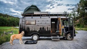 vanlife with pets