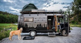 VanLife with Pets: 12 Couples Travelling with Pets
