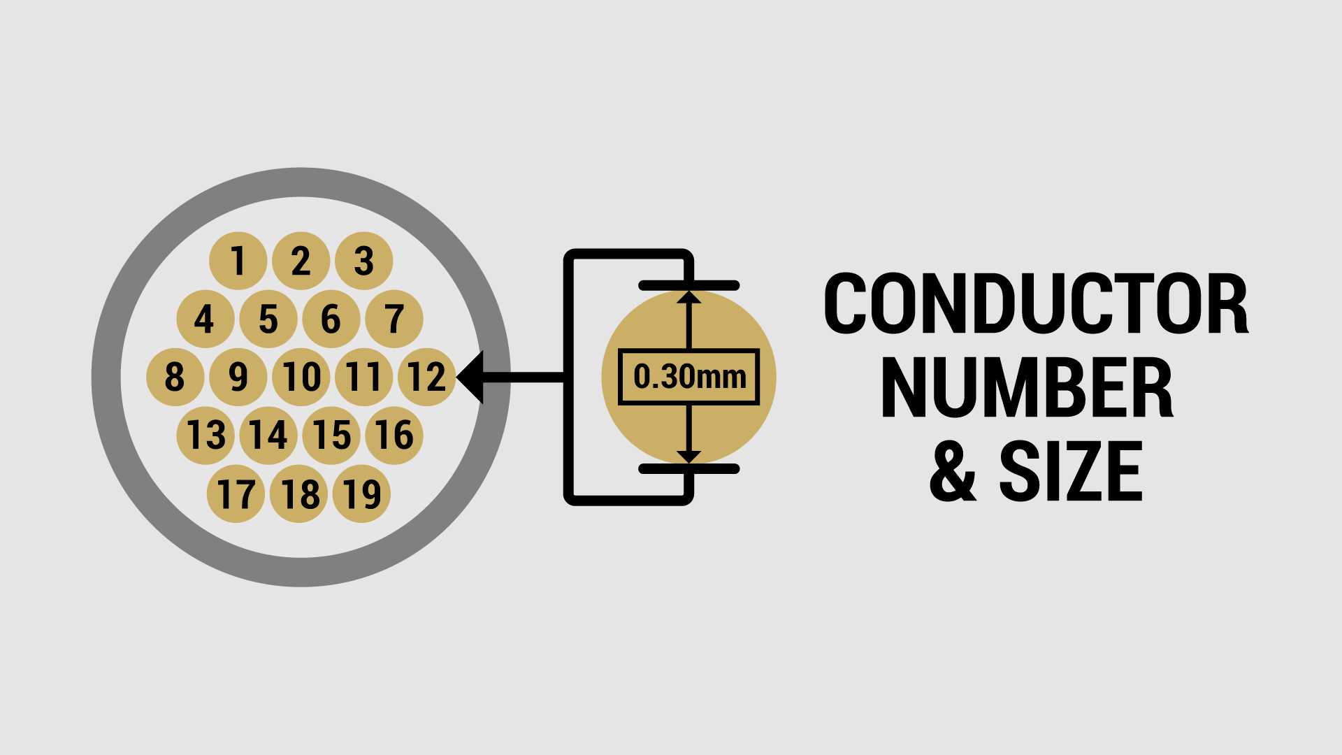 Wire Conductor Number and Size
